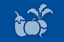 Frutta e ortaggi lavorati e conservati