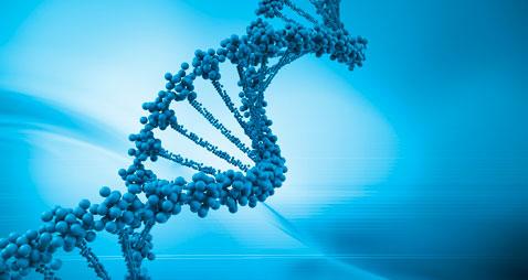 Bioscienze - La societa' USA Twist Bioscience acquisisce l'israeliana Genome Compiler Corp.