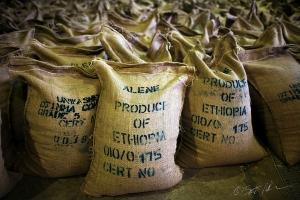 ETIOPIA. RECENTI MANIFESTAZIONI DI INTERESSE DA PARTE DI GRANDI GRUPPI INTERNAZIONALI.