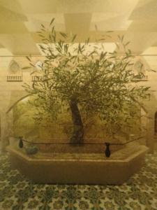 L'albero d'ulivo tema del padiglione palestinese a Milano Expo 2015