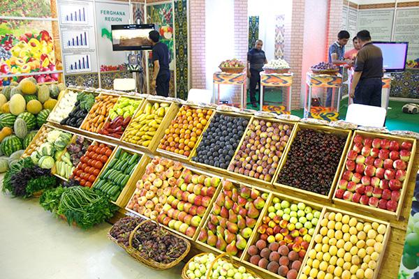 La Banca Mondiale stanzia 500 milioni di dollari USA per sostenere lo sviluppo del settore dell'orticoltura in Uzbekistan