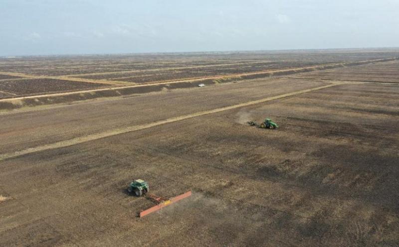 Creazione della Zona Economica Speciale agroindustriale di Limpopo