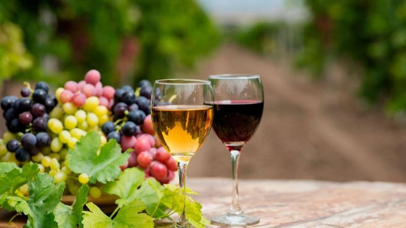 Esigenze analitiche e di certificazione d'origine richieste per l'esportazione di prodotti vitivinicoli in Brasile