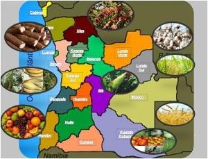 AGROANGOLA - Luanda, 28 novembre- 1º dicembre 2013
