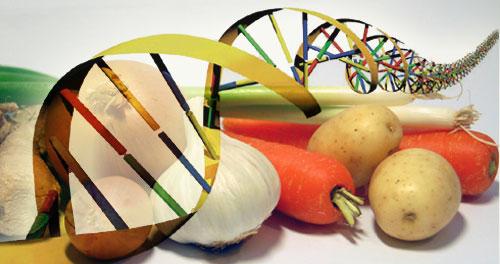 Il Congresso americano approva una nuova disciplina sull'etichettatura dei prodotti alimentari con OGM