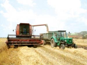 opportunita' di sostegno al settore agricolo tramite programma IFAD