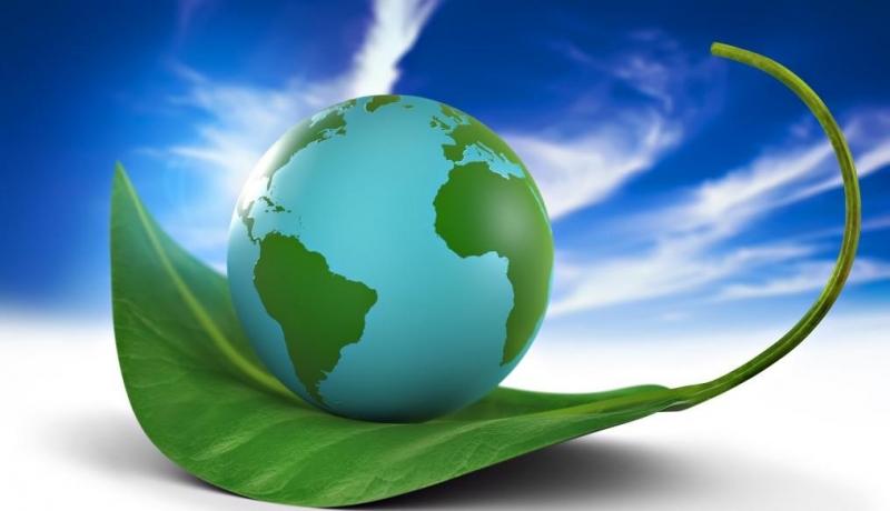 Bioeconomy: un progetto di ricerca realizzato dal Pellervo Economic Research (PTT)