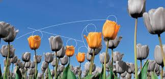 I Paesi Bassi mirano ad affermarsi come leader mondiale nel settore tecnologico.