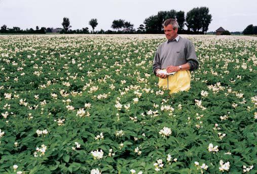 Aumentano le esportazioni di prodotti agricoli dei Paesi Bassi, che si confermano secondo esportatore mondiale dopo gli USA