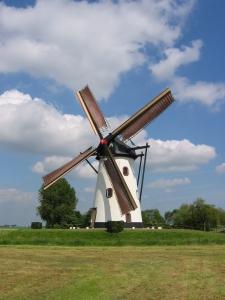 Nel 2014 la principale fonte di energia rinnovabile è quella eolica